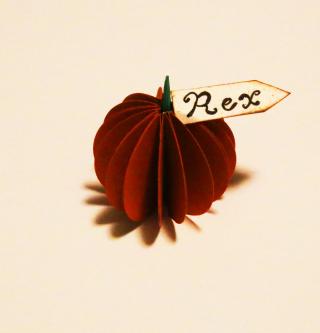 Pumpkin Place card 7