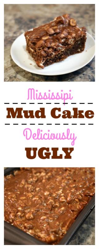 Pinterest Mud Cake