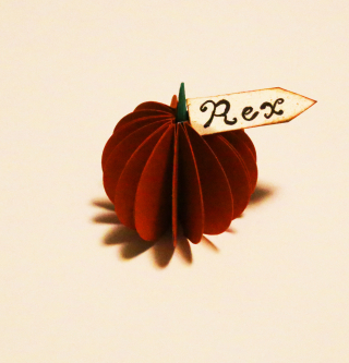 Pumpkin Place card 7