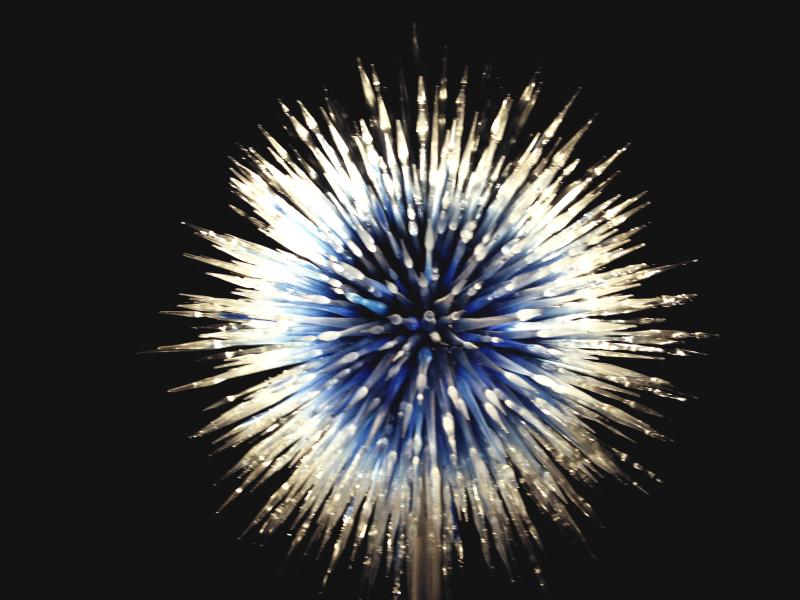 Chihully Blue Starburst