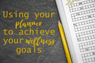 Planner Wellness Title Image
